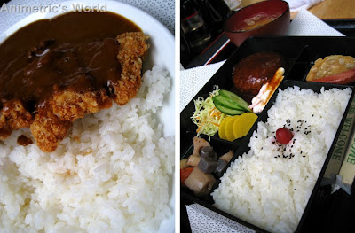 Katsu Curry Rice and Hamburg Steak Bento at Choto Stop
