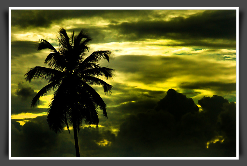 kerala landscape