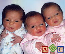 The daily life and activities of a family with triplets, born August 2007 at 35 weeks.
