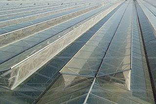 Invernaderos principales tipos de invernaderos - Invernaderos de cristal ...