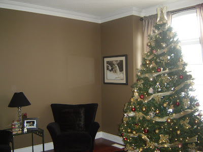 Popular Living Room Paint Colors on Living Room Furniture  Living Room Colors