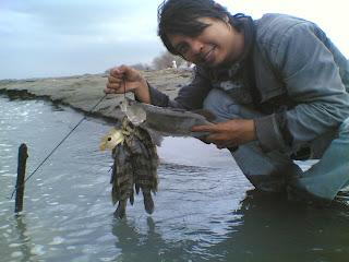 mancing kakap pantai tirang