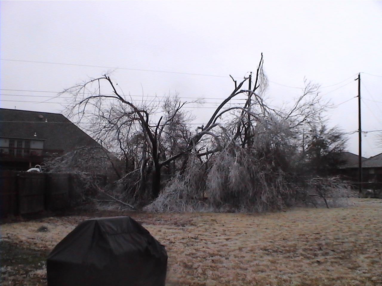 [Ice+Storm+12-2007]