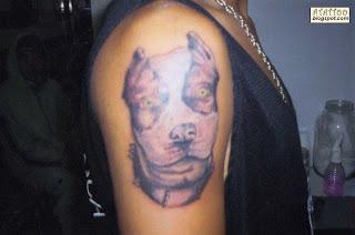 Pitbull tatuado no braço.
