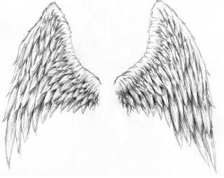 Desenho de asas