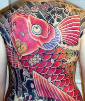 Carpa vermelha nas costas