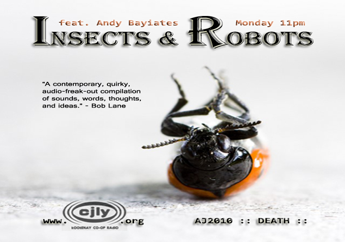 Insects & Robots