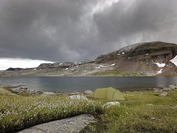 Hardangervidda II 2010