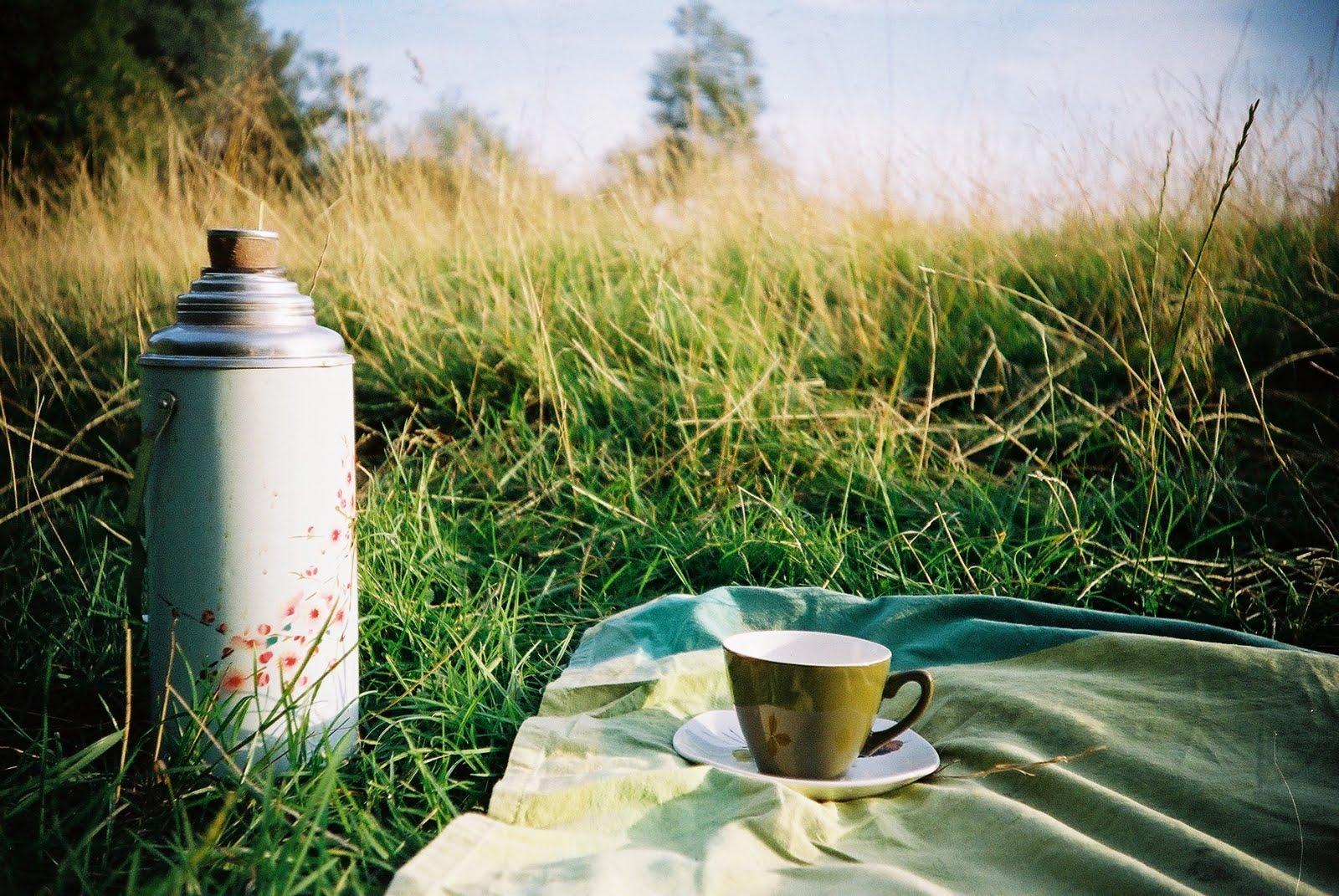 picture picnic workshop emma bradshaw photography picture picnic workshop