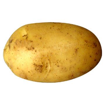 Детские картинки - 4 potatoes картофель.