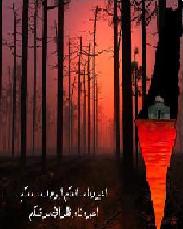أعيرونا مدافعكم قصيده للشاعرالدكتور عبدالغني التميمي اضغط على الصورة