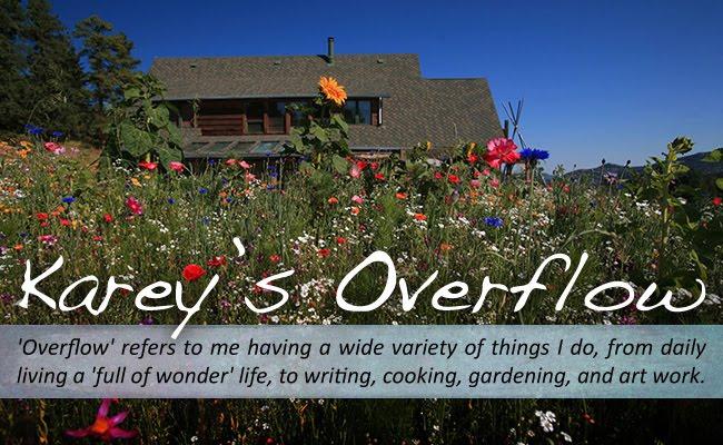 Karey's Overflow