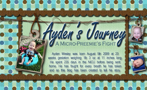 Ayden's Journey: A Micro-Preemie Fight
