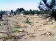 خاوران ها تکثیر می شوند:دیروز خاوران و امروز بهشت زهرا و گورهای دسته جمعی کشتارهای خیابانی