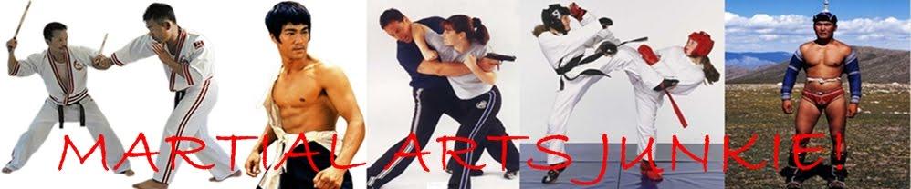 Martial Arts Junkie