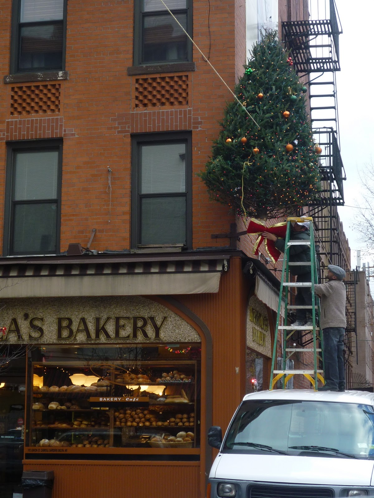 Lost City: Merry Christmas from Carroll Gardens