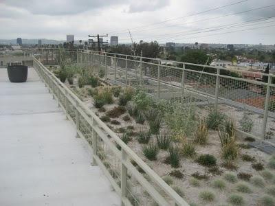 751 Fairfax Roof
