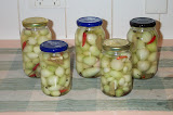 Preserving Excess Produce