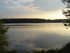 Les étangs de Trémelin