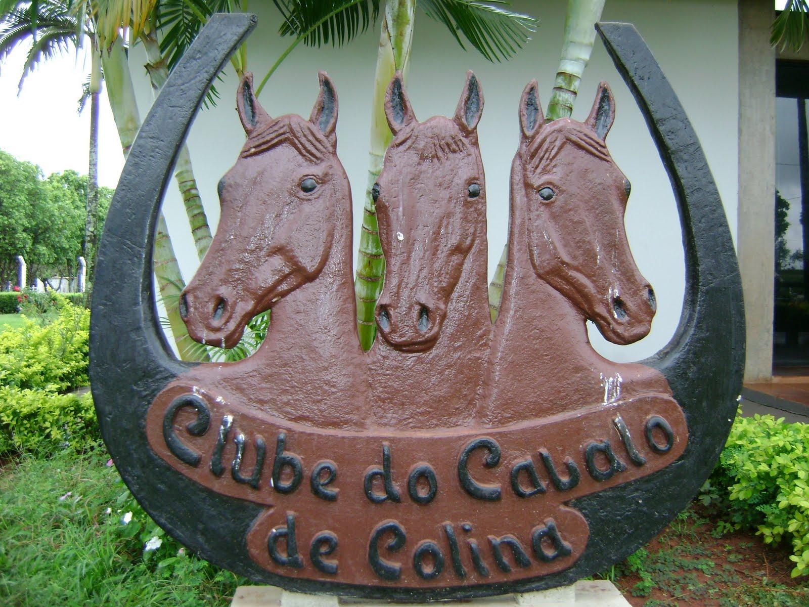CLUBE DO CAVALO DE COLINA