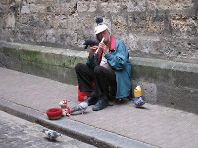 Pigeon Man Latvia
