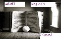 Premio Meme Blog 2009