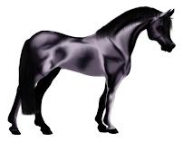 pas.de.cheval perle noir