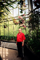 în seră, grădina botanică din Cluj-Napoca