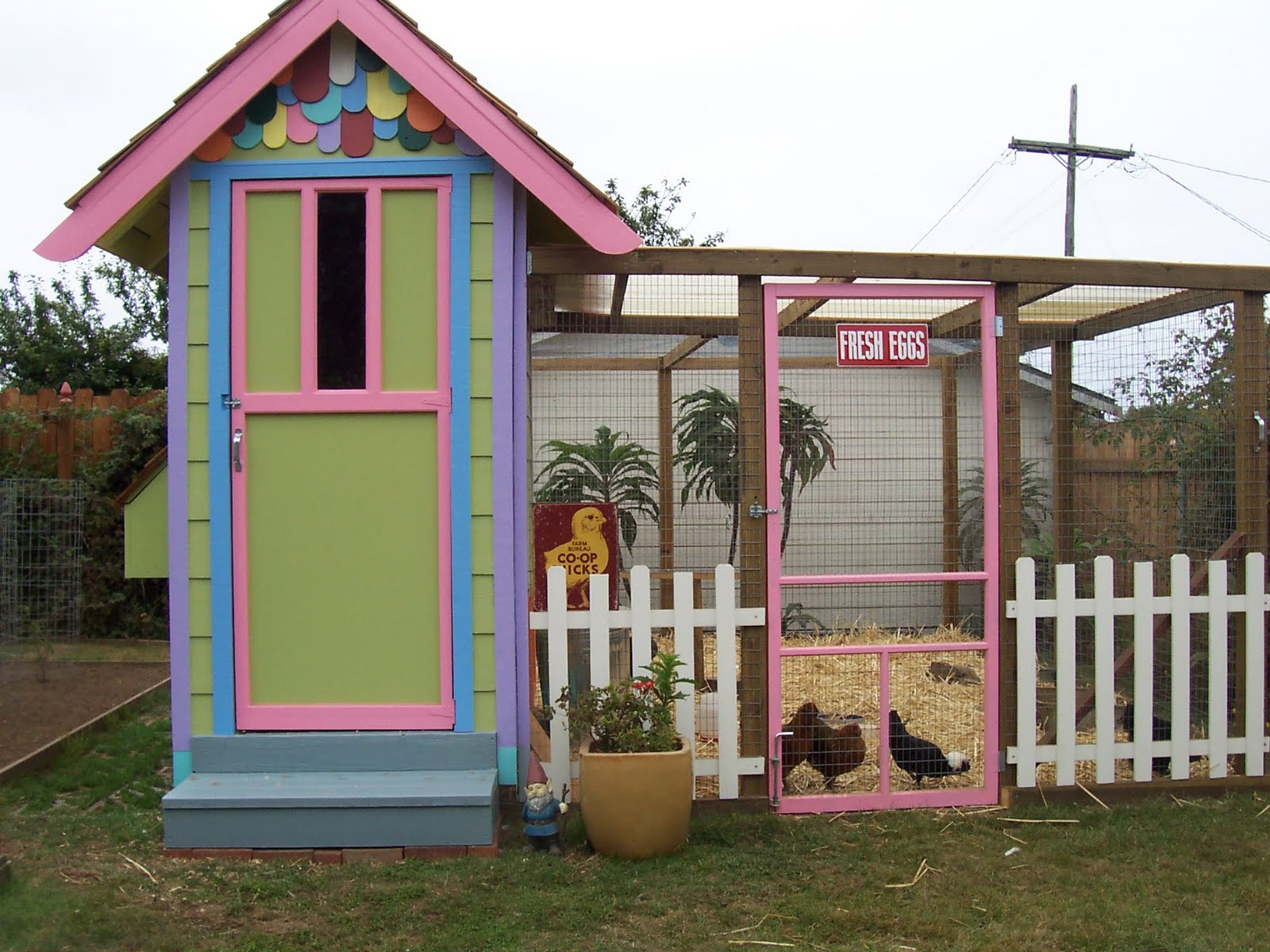 Small chicken coop looking for fancy hen house plans for Cute chicken coop ideas
