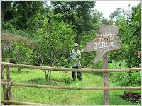 Kebon Agung  Agricultural Tourism Village