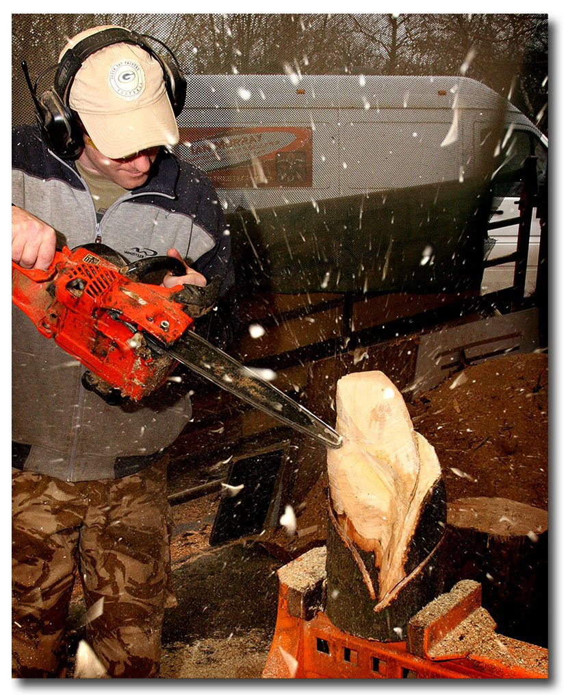 Welshphotoguy chainsaw carving