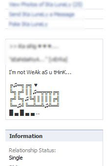 fb text art profile