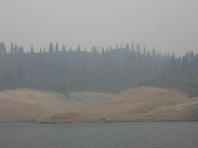 The reel fishing report lake shasta smoking fishing report for Lake shasta fishing report