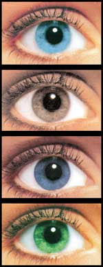 eyes all2 Colored Contact Lenses