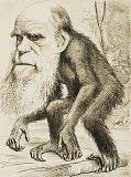 EL FRAUDE DE LA TEORIA EVOLUCIONISTA