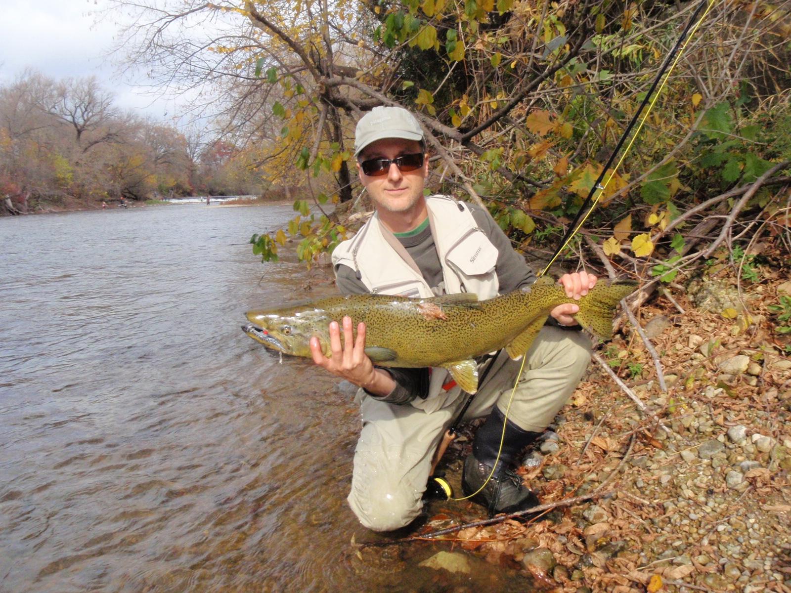 On the creek milwaukee river for Milwaukee river fishing