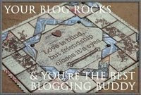"PREMIO ""YOUR BLOG ROCKS"""