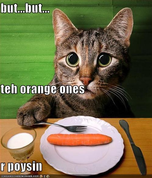 Cat Eats Carrot in Dinner - Funny Picture