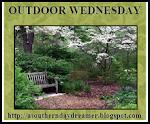Outdoor Wednesday