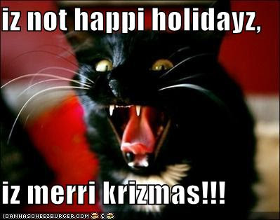 christmas lolcat