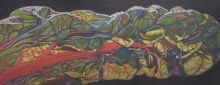 Swiss Chard Mosaic