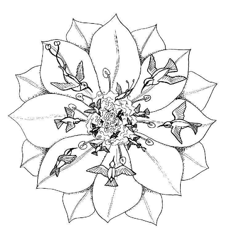 Mandalas Para Pintar: Flor con colibríes