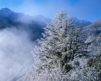 muntii peisaje poze alpin