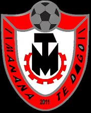 Escudo MTD - 2011