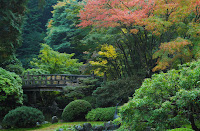 Sugimoto America Tea will host a Japanese tea tasting at the Portland Japanese Garden in Oregon