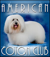 American Coton Club