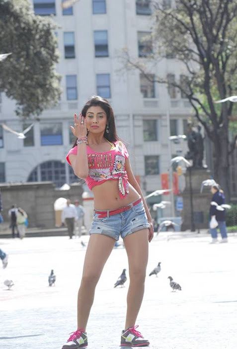 shriya saran posing cute stills