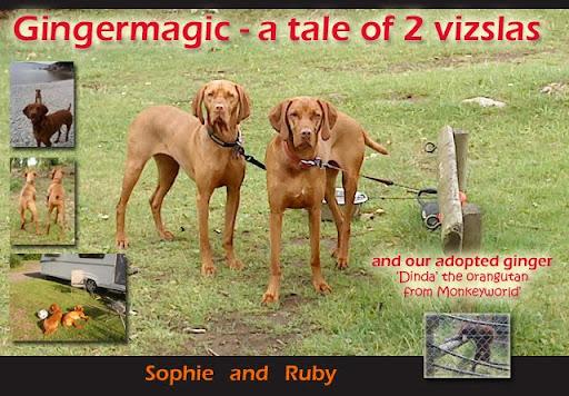 Ruby&Sophie