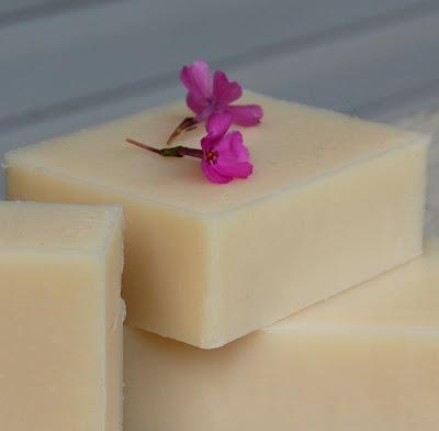 Camellia Coconut Milk Jovia Soap