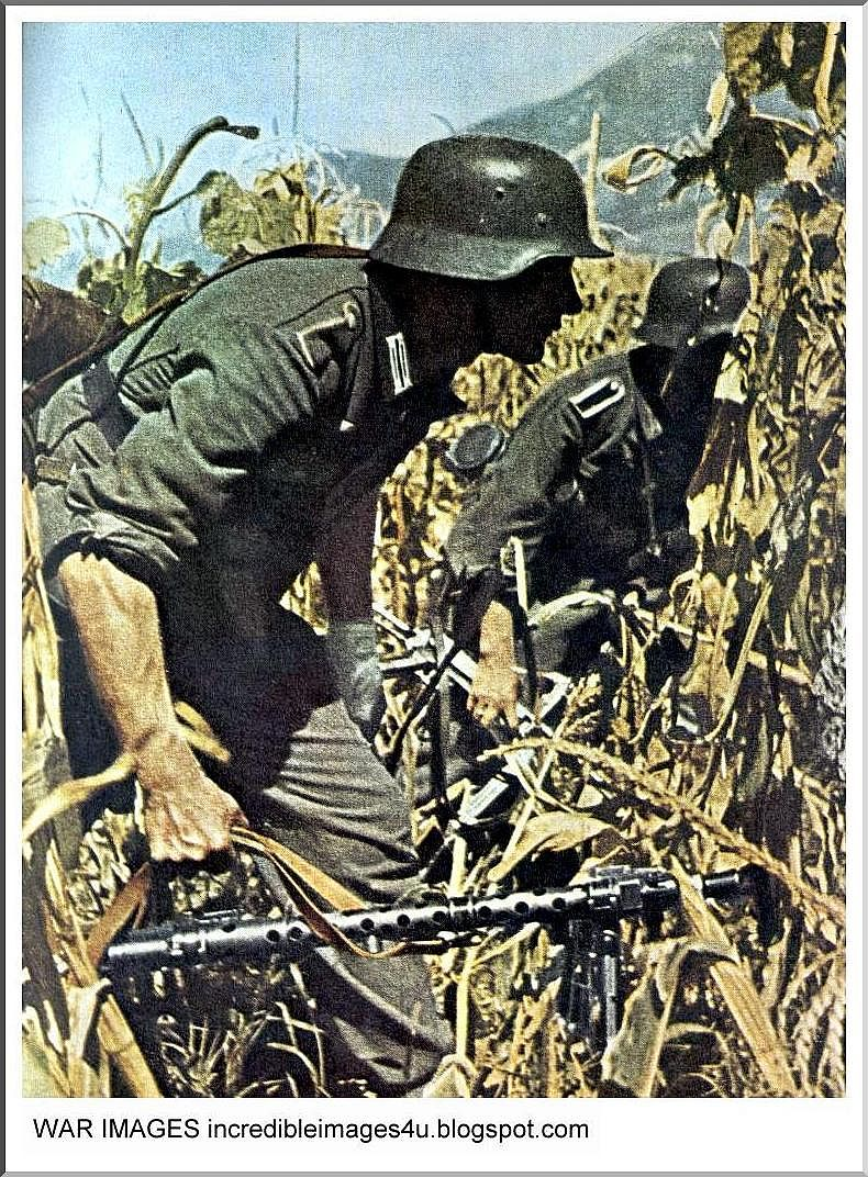 Illustrated history: relive the times: images of war, history , ww2